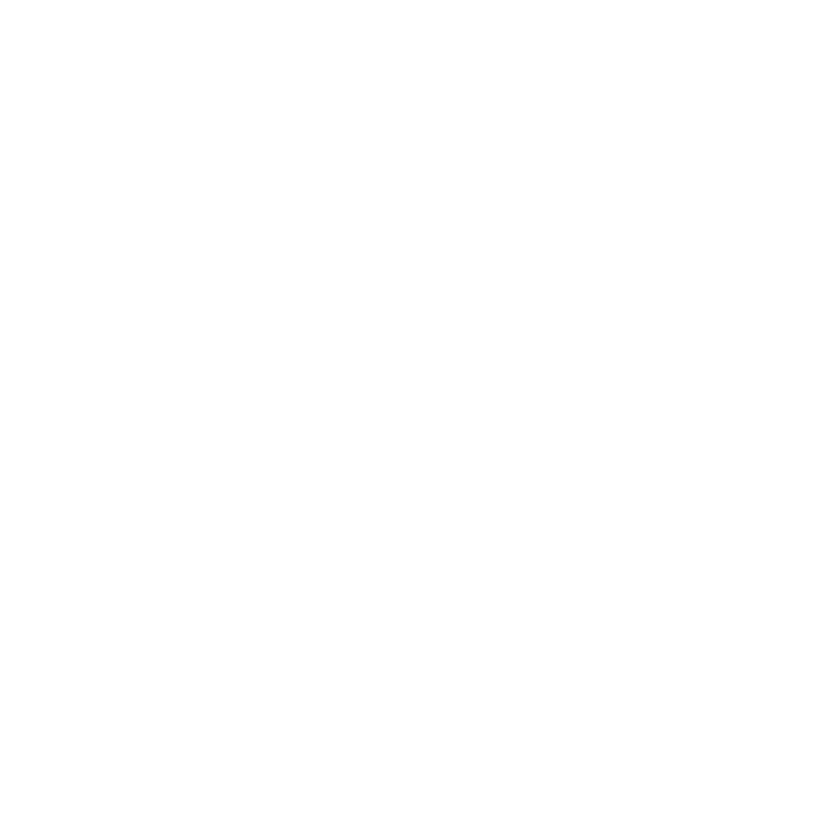 Fentress Global Challenge